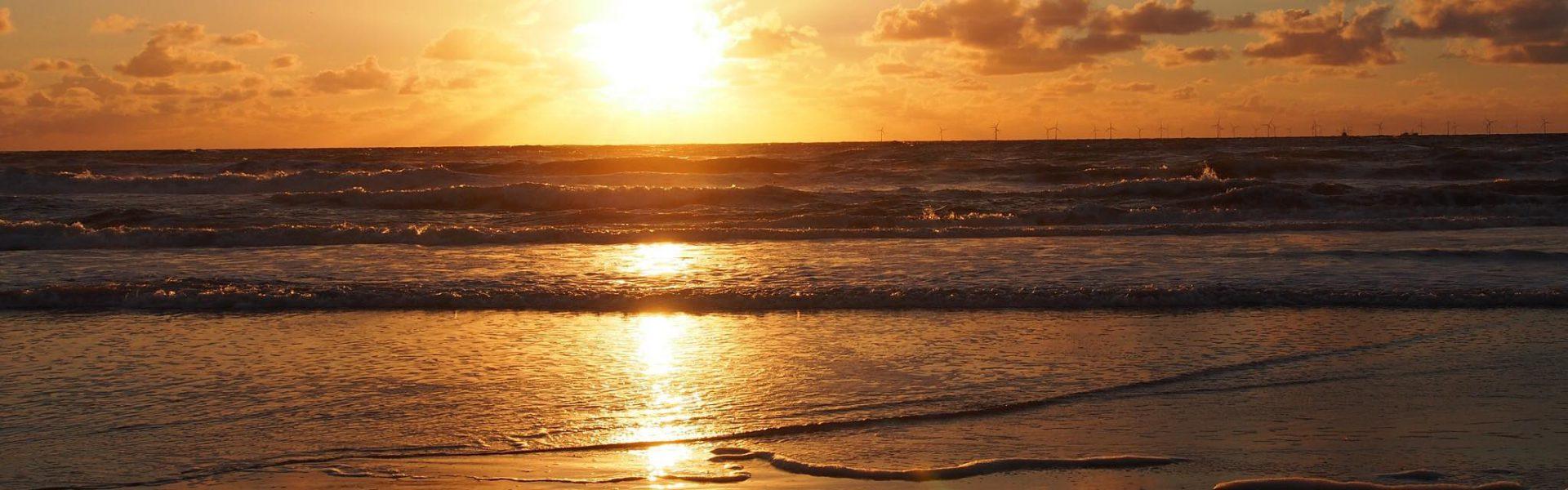 Nautilus sunset